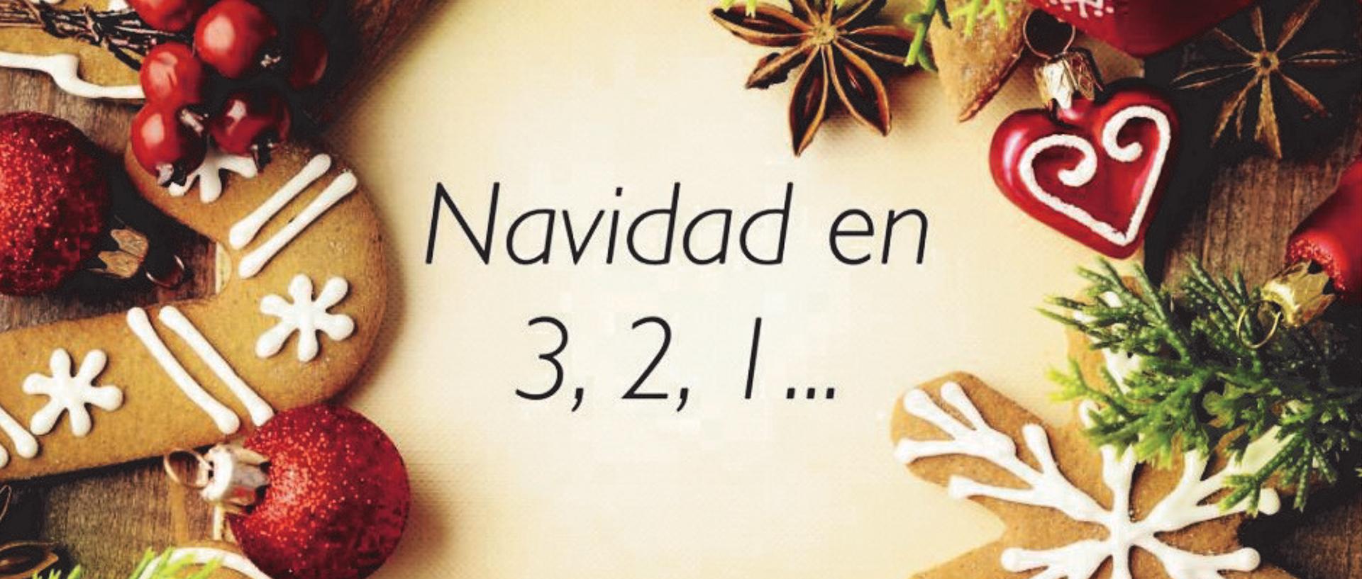Gastro navidad (2)