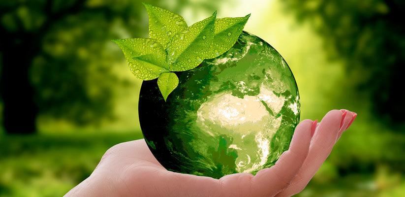 Dia-Mundial-del-Medio-Ambiente-823x400